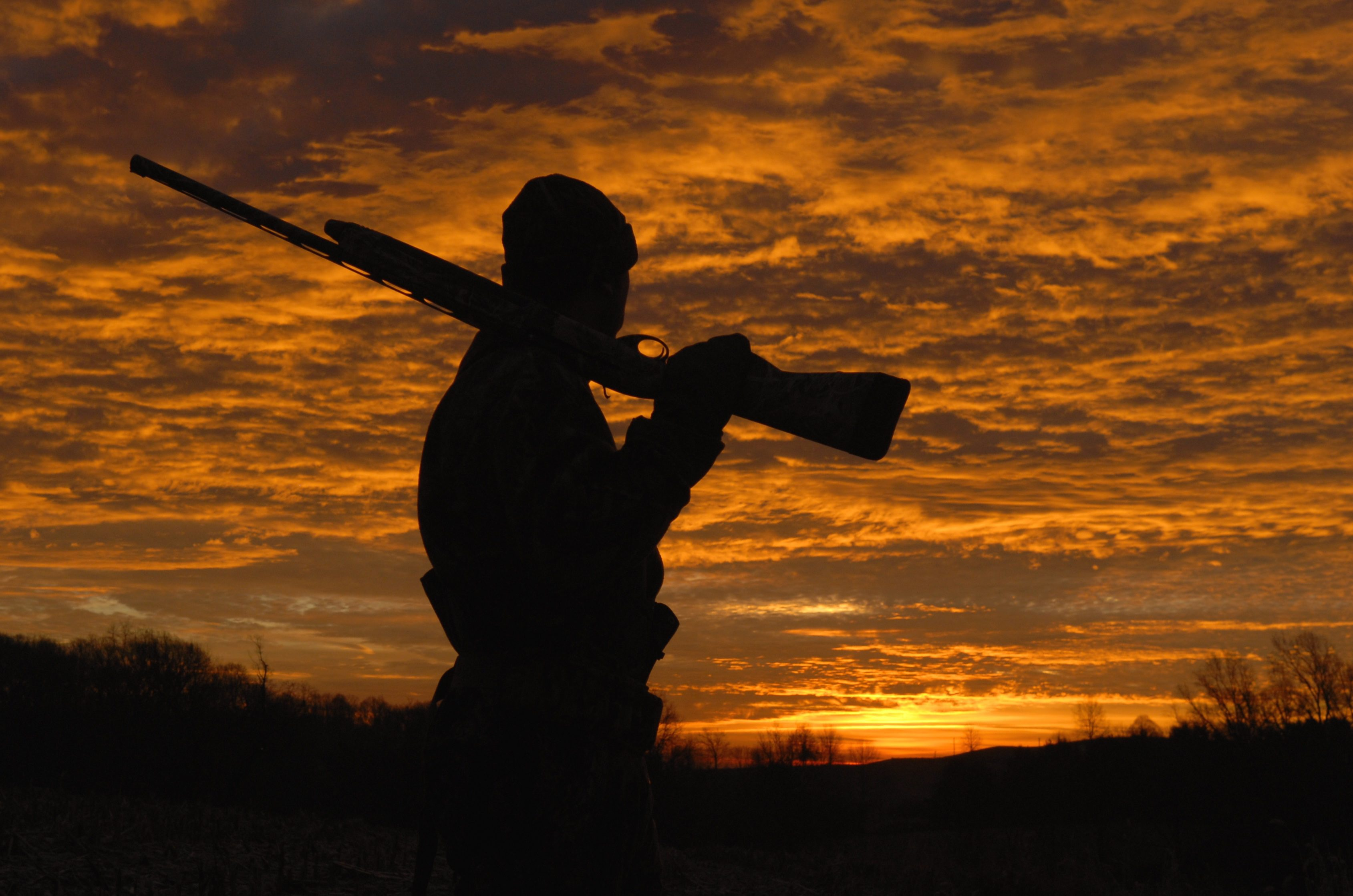 5 Reasons to Go on Guided Duck Hunting