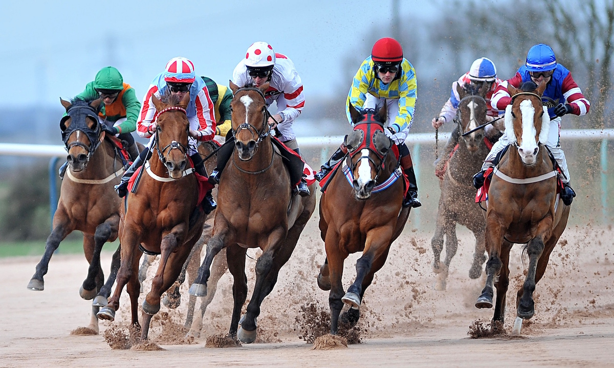 Do You Want to Improve Horse Racing Results? Make The Things Possible Through Vital Tips
