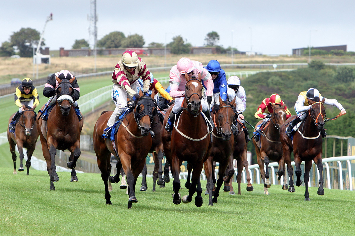 How to Win When Betting on the Horses