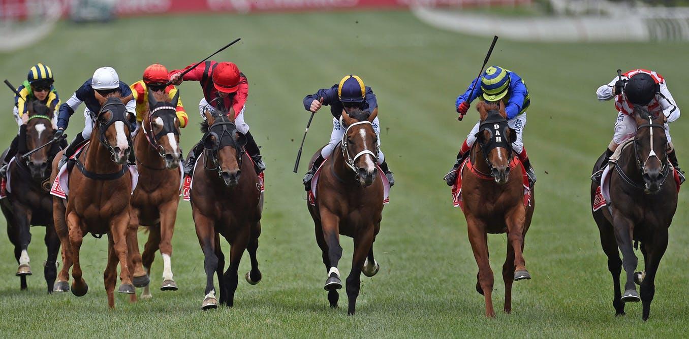 Vital Horse Racing Betting Game Tactics to Enjoy Win